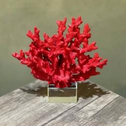Kristal Ayaklı Dekoratif Mercan Obje